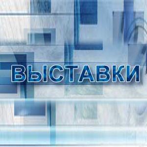 Выставки Чапаева